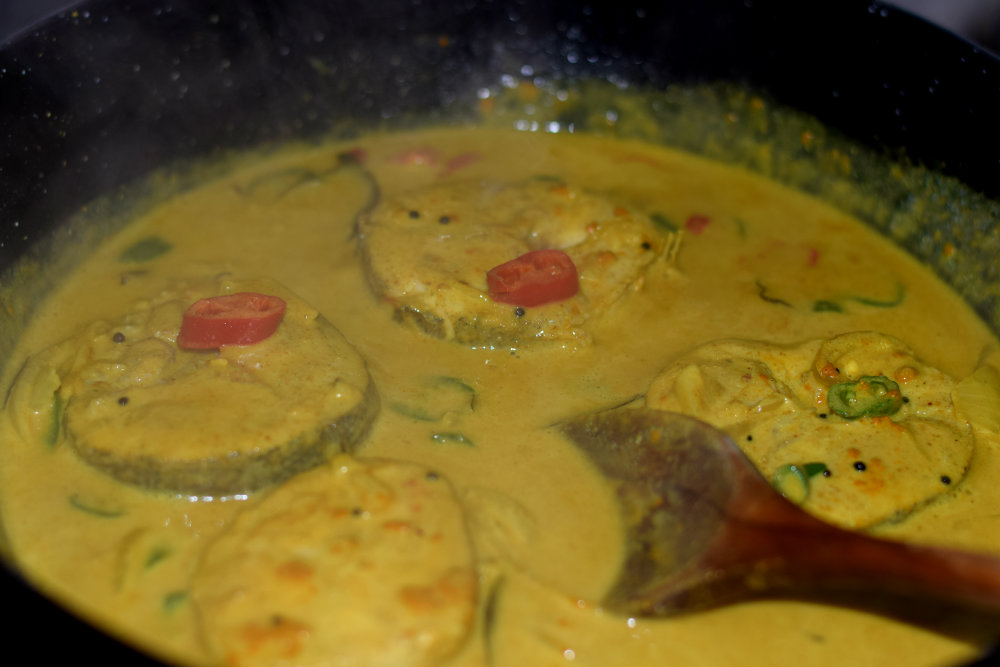 Coconut fish curry 7