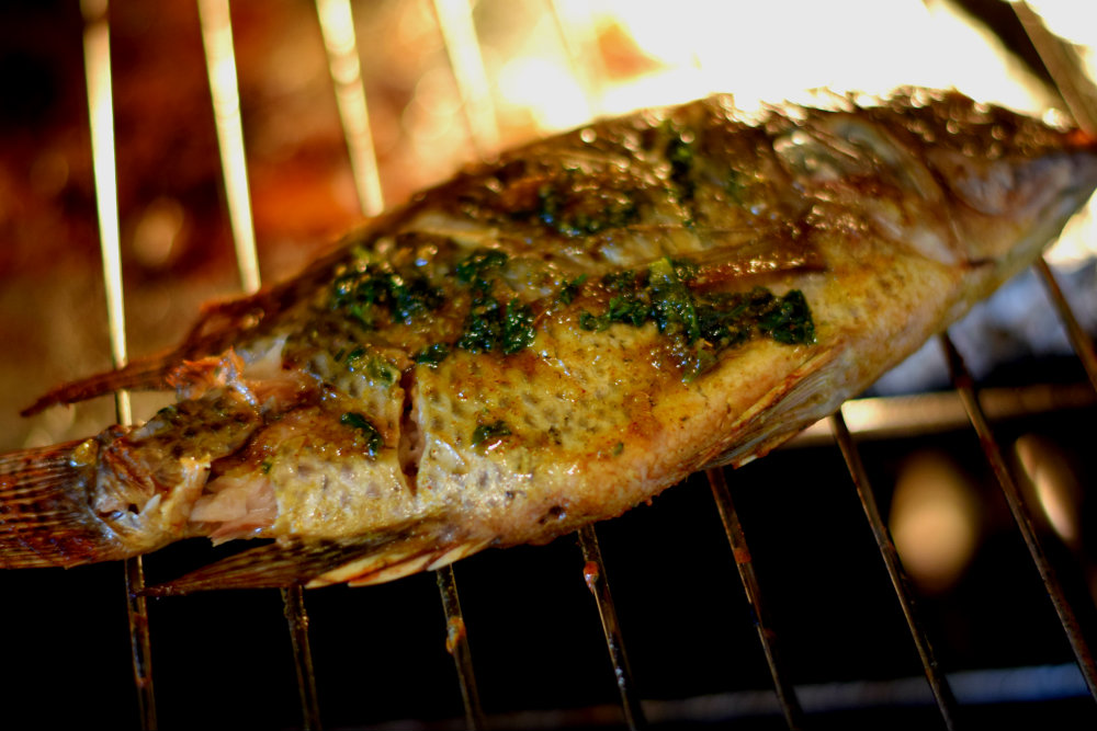Nigerian grilled fish grilled tilapia sisi jemimah for How to cook fish on the grill